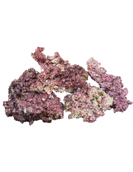 Real Reef Rocks 1 Kg