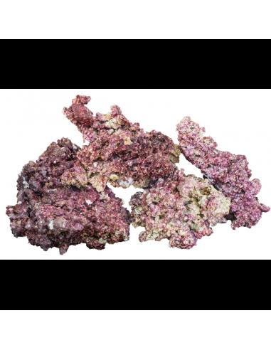 Real Reef Rocks 1 Kg