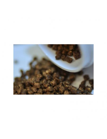 Easy Reefs dki marine Granulatfutter 1.2 mm 70 g